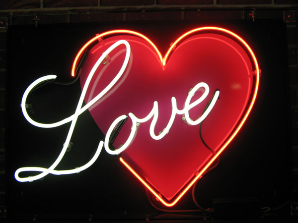the sweet lark neon love