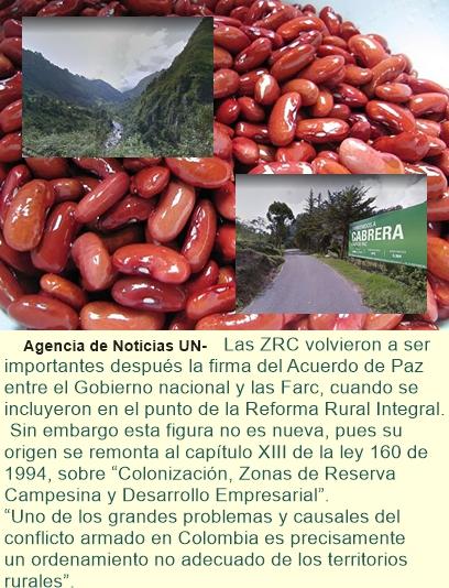 Zona de Reserva Campesina ayuda a ordenar territorio en Cabrera