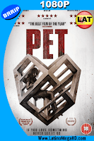 Pet (2016) Latino HD 1080P - 2016