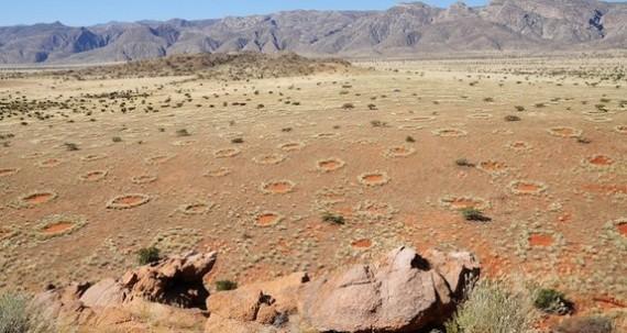 Lingkaran-Lingkaran Misterius Muncul Di Gurun Australia