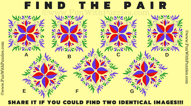 It this picture puzzle, your challenge is to find the pair which exactly match with each other among the given 5 puzzle images