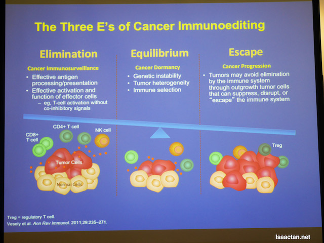 Three E's of Cancer Immunoediting