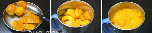 Home Made Mango Squash
