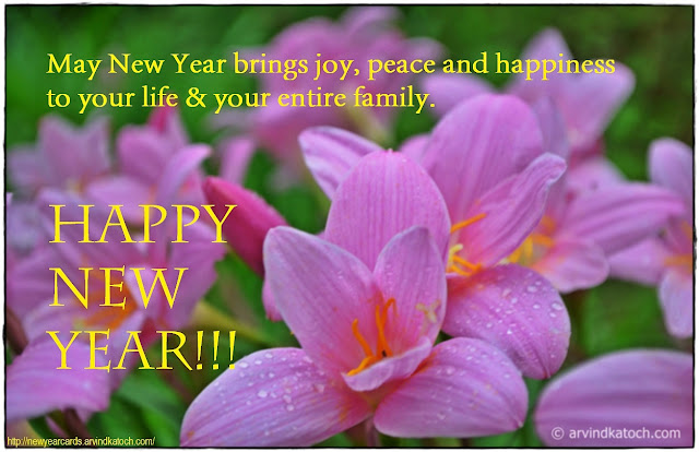 Wild Flower, New Year Card, New Year, brings, joy, peace, happiness