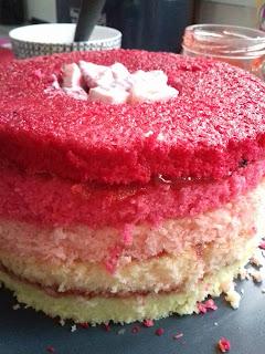 recette de l'ombre cake rose ou gâteau dégradé