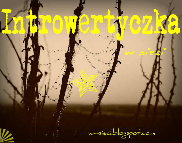 Introwertyczka w sieci