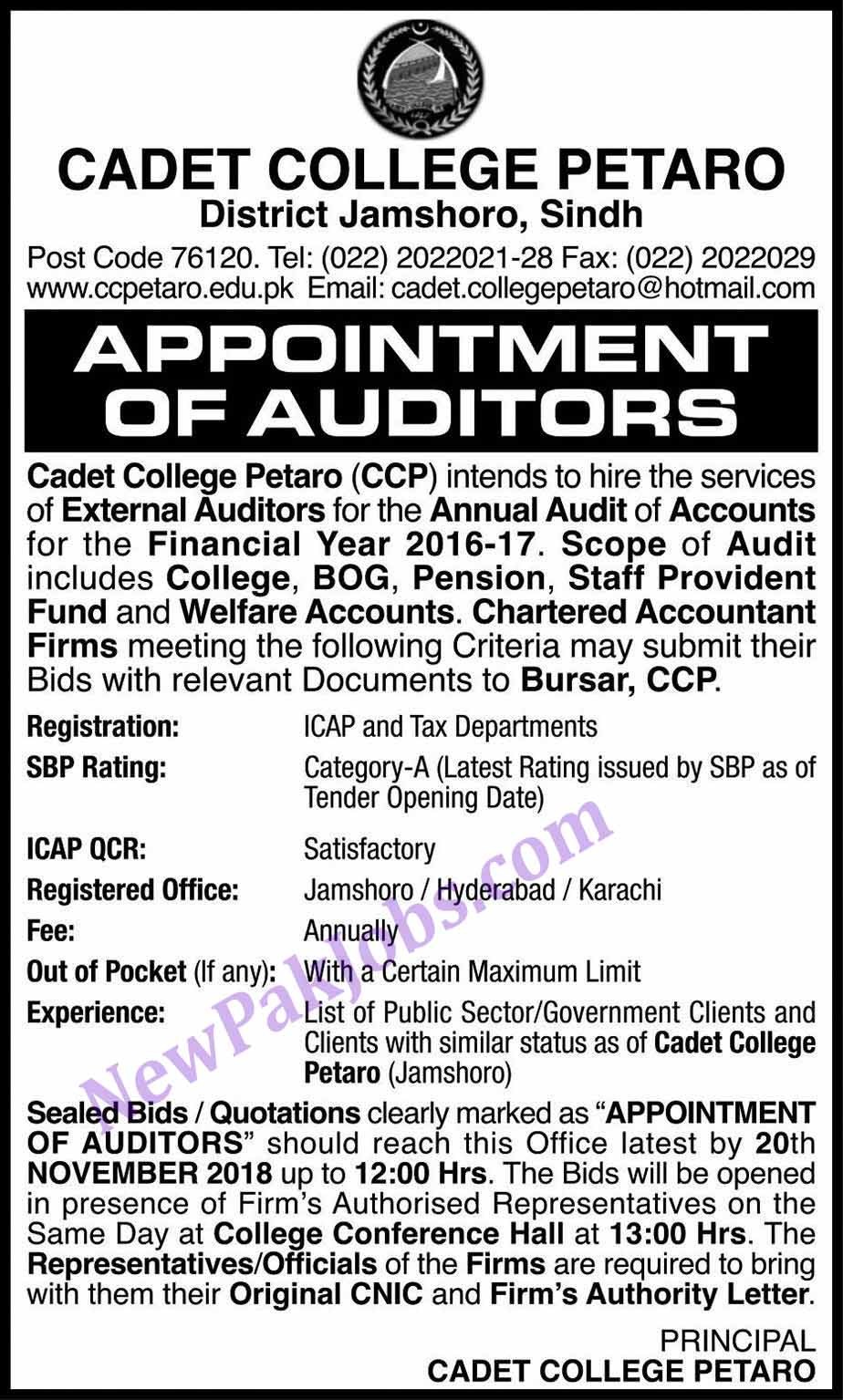 External Auditor Jobs in Cadet College Petaro District Jamshoro Sindh