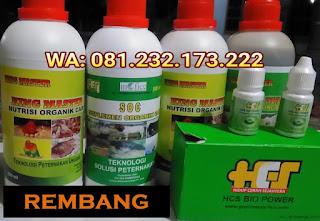 Jual SOC HCS, KINGMASTER, BIOPOWER Siap Kirim Rembang