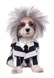 dog-halloween-costumes-target