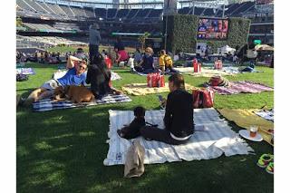 Scoreboard Sweep - Dog Days of San Diego