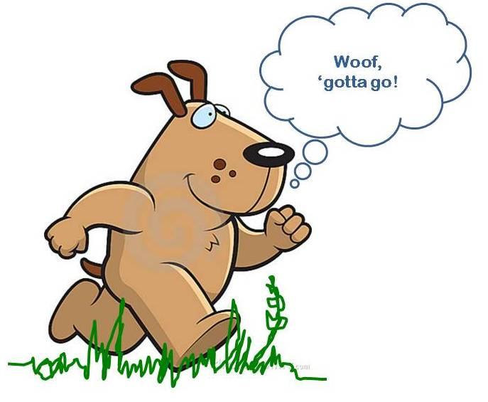 Ottawa Valley Dog Whisperer Natural Herbal Treatments