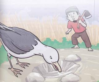 dongeng Kisah Petani dan Burung Camar