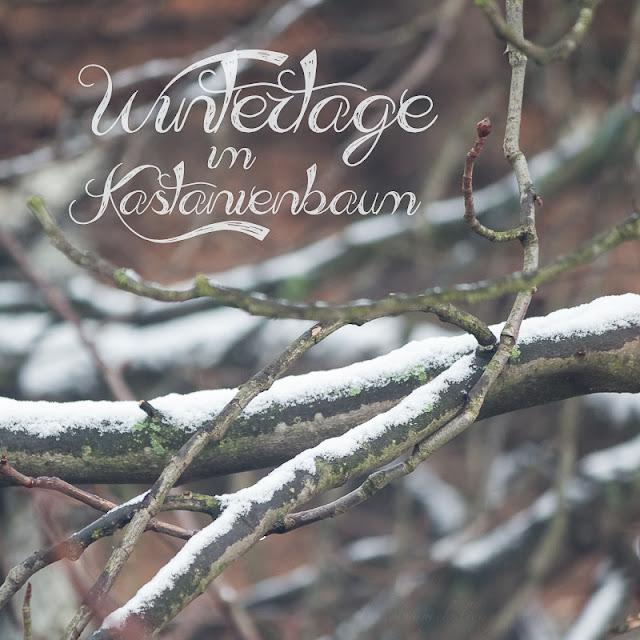 gedicht dieser winter ist ein traum