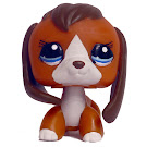 Littlest Pet Shop Beagle Generation 3 Pets Pets