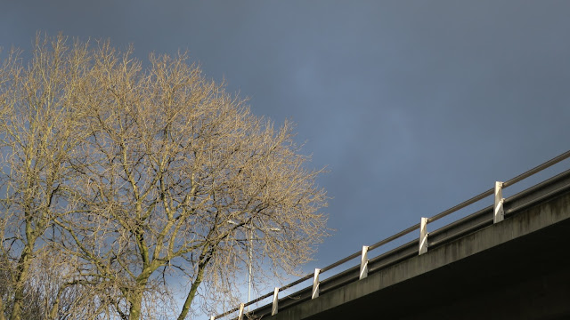 Stark modern bridge and winter tree bare of leaves