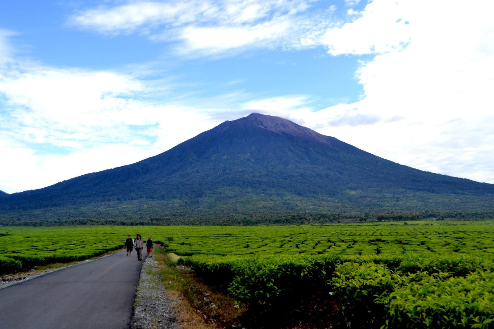 39 Gambar Pemandangan Gunung Di Indonesia Terindah Gambar Pemandangan