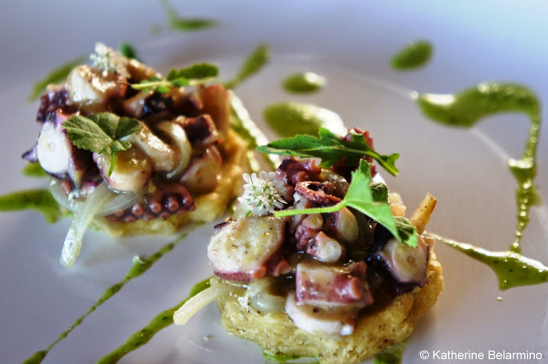 Malva Octopus Sopes Valle de Guadalupe Baja California Mexico