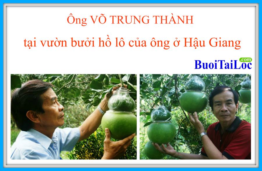 buoi-ho-lo-tai-loc-Vo-Trung-Thanh-lam-qua-tang-tet-doc-dao