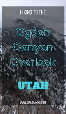 Hiking to the Ogden Canyon Overlook, Hiking in Utah with Dogs, Hiking near Snowbasin Ski Resort, Hiking in Ogden, Utah