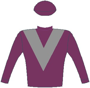 Mambo Mime - Silks -  Fieldspring Racing - Maroon, grey chevron, maroon sleeves and cap - Vodacom Durban July