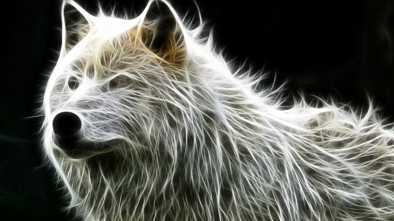 Nice Animals Fractal All About Photo