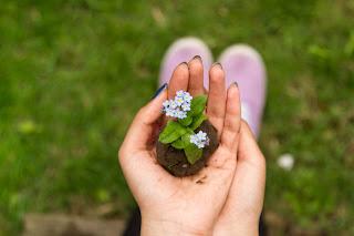 Berkebun untuk menjaga suasana hati