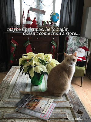 maybe christmas, he thought, doesn't come from a store