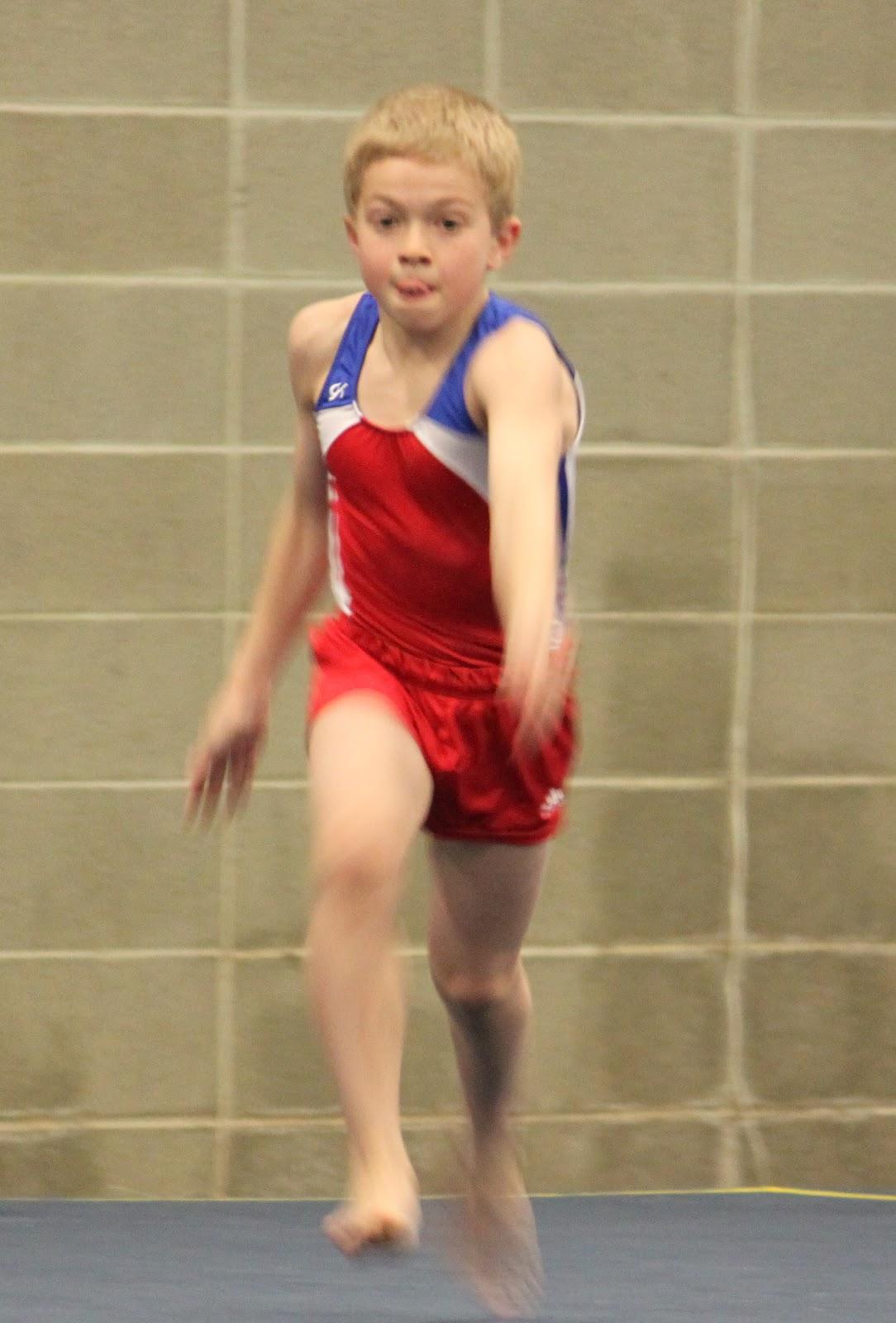 level 4 gymnastics state meet 2012 illinois results