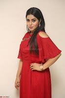 Poorna in Maroon Dress at Rakshasi movie Press meet Cute Pics ~  Exclusive 165.JPG