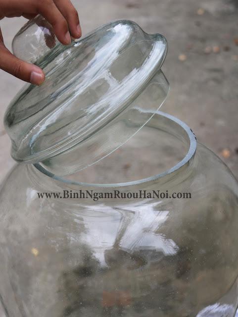 Binh thuy tinh ngam sam Thai Binh 40 lit