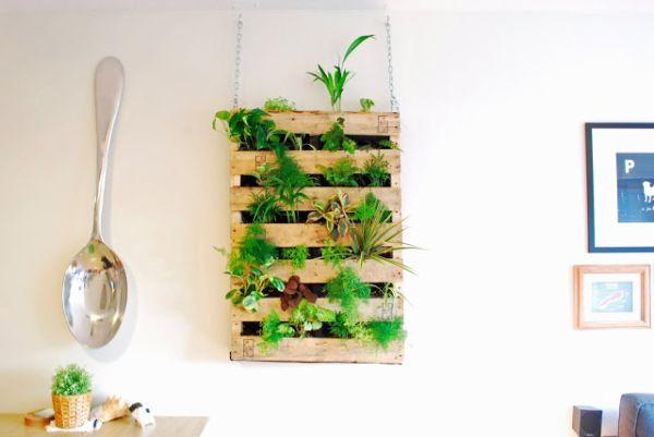 ideias baratas para jardim vertical : ideias baratas para jardim vertical:sábado, 20 de fevereiro de 2016