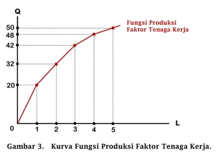 Kurva Fungsi Produksi Faktor Tenaga Kerja - www.ajarekonomi.com