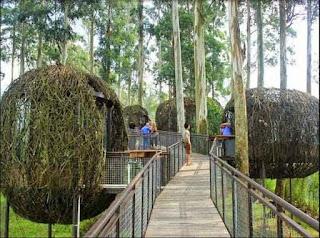 5 Tempat Wisata Keren yang Banyak Dicari di Bandung