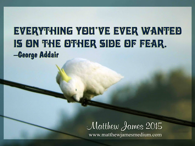 'Everything you've ever wanted is on the other side of fear' - George Addair