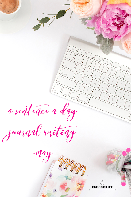 A Sentence A Day Journal Writing