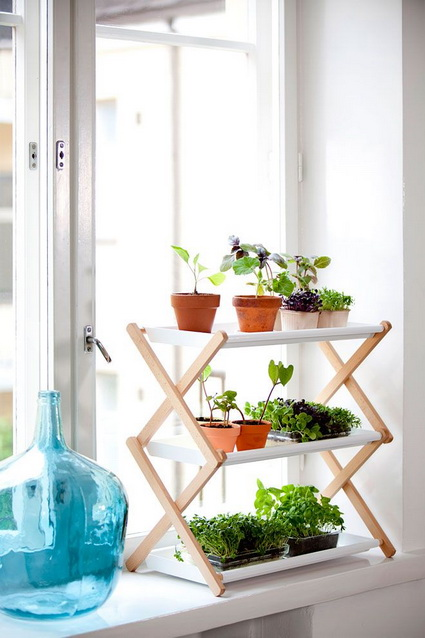 How To Using Plants Decorating Ideas For Interiors 1