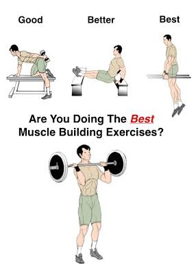 What Are The Best Exercises For Building Muscle Www Bodybuilding110 Com