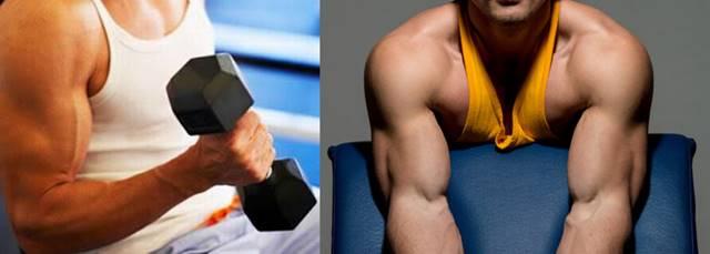 Rutina de ejercicios para brazos anchos, fuertes y muy grandes a nivel muscular