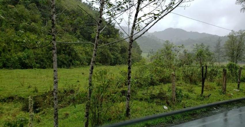 SENAMHI ALERTA: La Selva soportará lluvia de moderada a fuerte intensidad - www.senamhi.gob.pe
