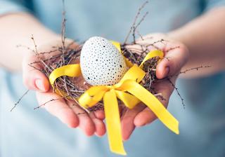 egg donation bangalore