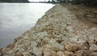 Perkuatan tebing Sungai Lariang