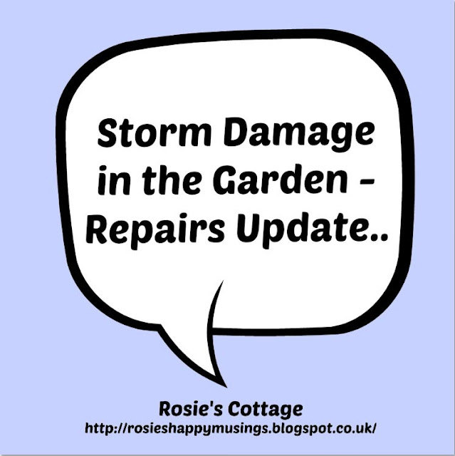 Storm Damage - Repairs Update