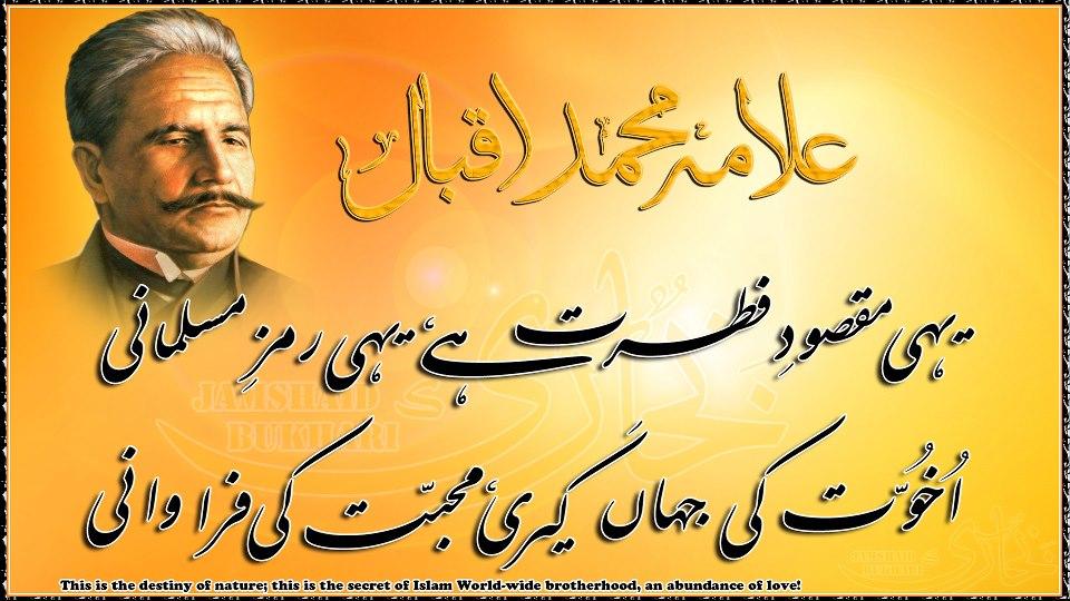 Iqbal Urdu Alama Poetry