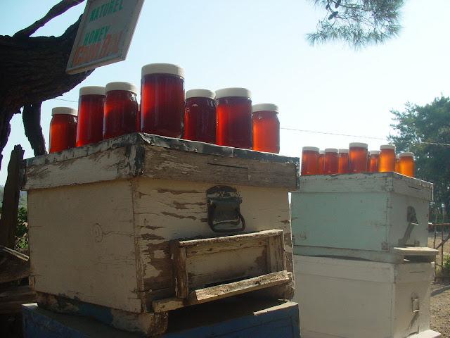 Πωλείται μέλι πεύκου Εύβοιας στον Πύργο Ηλείας
