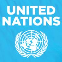 United Nations Internship | Development Coordination Intern, Kuwait