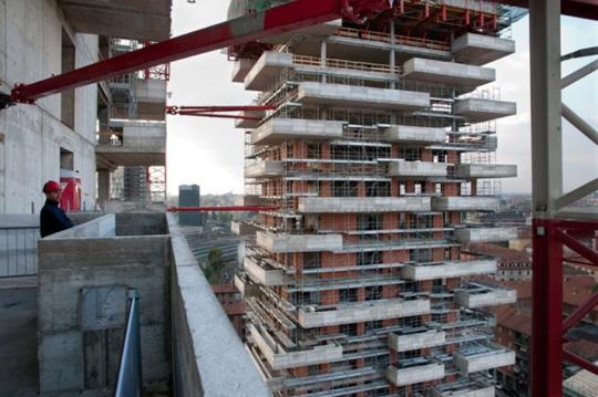 construccion de edificio de arboles