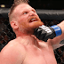 UFC Fight Night AMBURGO. Arlovski vs Barnett. Video Fight.
