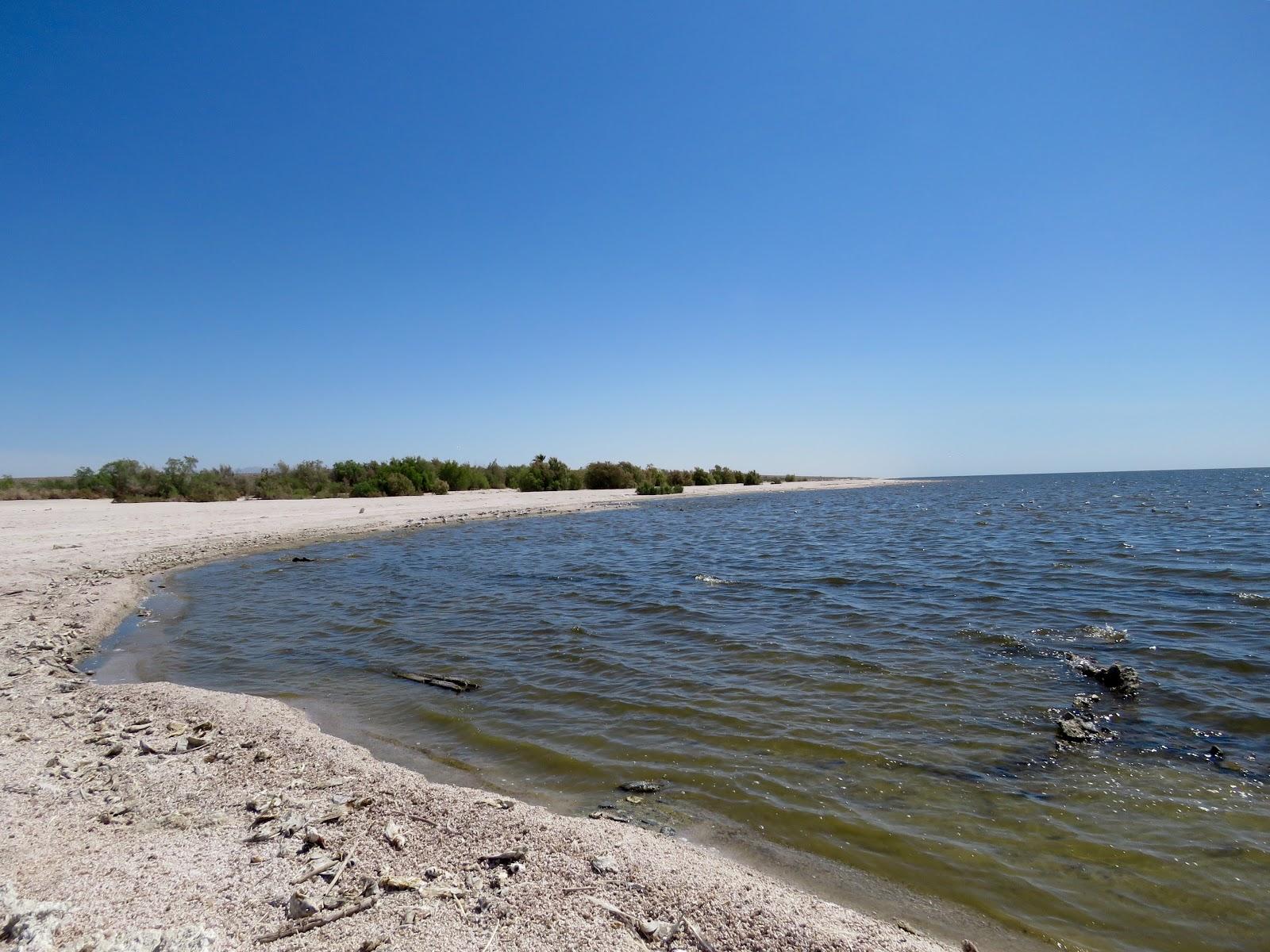 Winds of destiny rvlife salton sea state rrecreation for Salton sea fishing