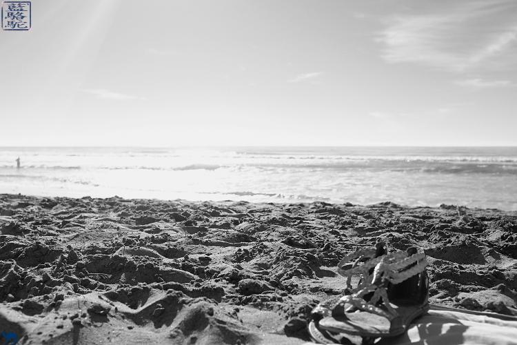 Le Chameau Bleu - Escapade à Torrey Pines Beach Californie du Sud