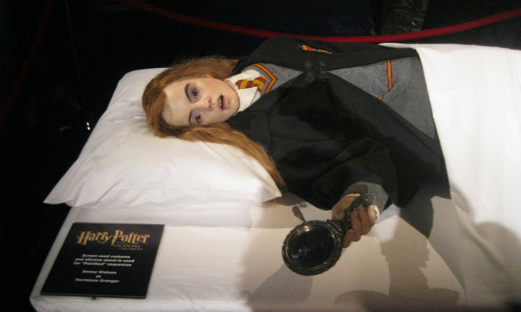 Hermione Granger Chamber of Secrets props